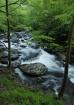 Falls at Tremont