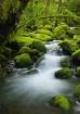 Gorge Stream 2