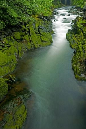 Alaskan Flow