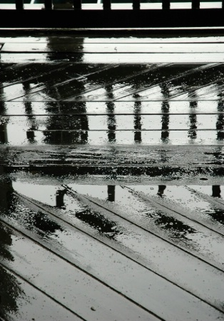 Puddles reflected