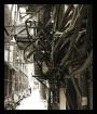 Kowloon Alley I