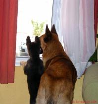 Aidan & Rorie May 2006