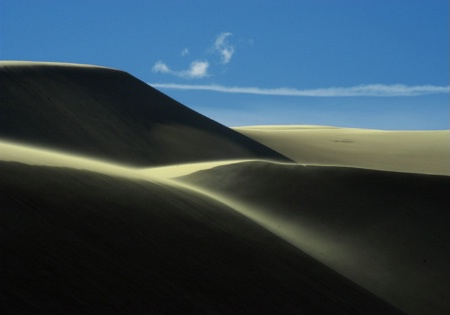 Dunes In The Wind