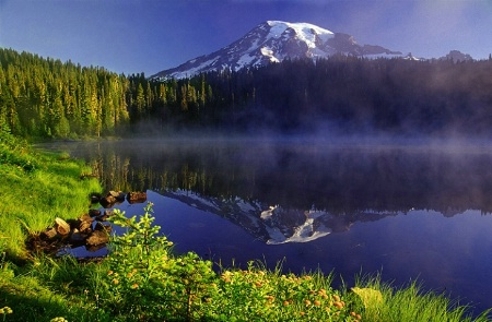 WA-1001, Mt. Rainier National Park