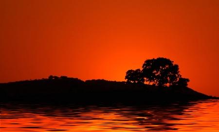 Sunset Oak Lake
