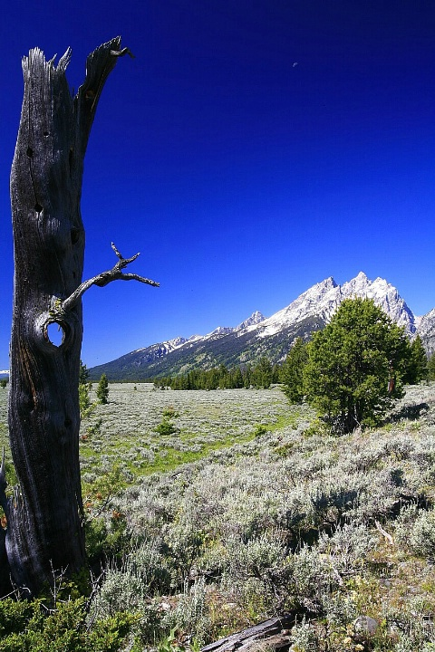 The Hole Tetons
