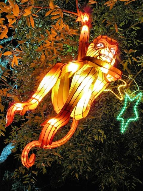 Monkey Lantern, v46, Edit B