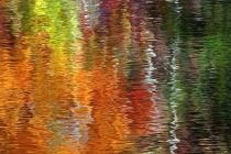Fall Reflections 2 - img 5204.  Harbor Springs, MI