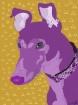 Purple Peatie Por...