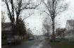 spring rain. cano...