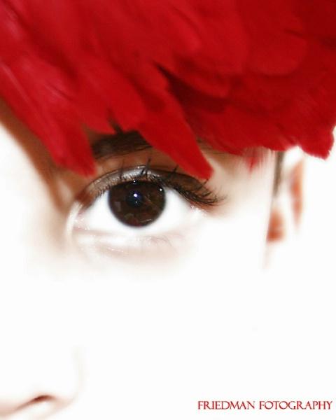 Eye See One