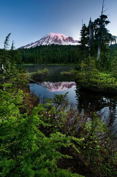Mt. Rainier Sunrise Reflection