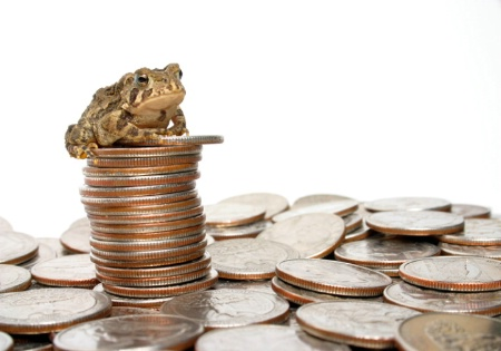 Toadally Rich!