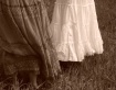 Skirts in Sepia