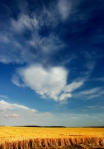 Heart of Cloud