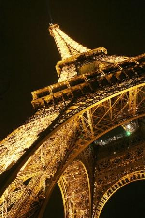 The Paris Icon