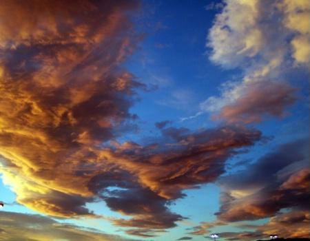 HEAVENLY SKYS