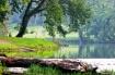 River Reverence