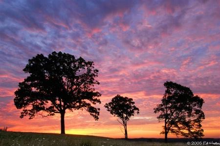 Gettysburg Colors