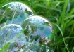 Resting Bubbles