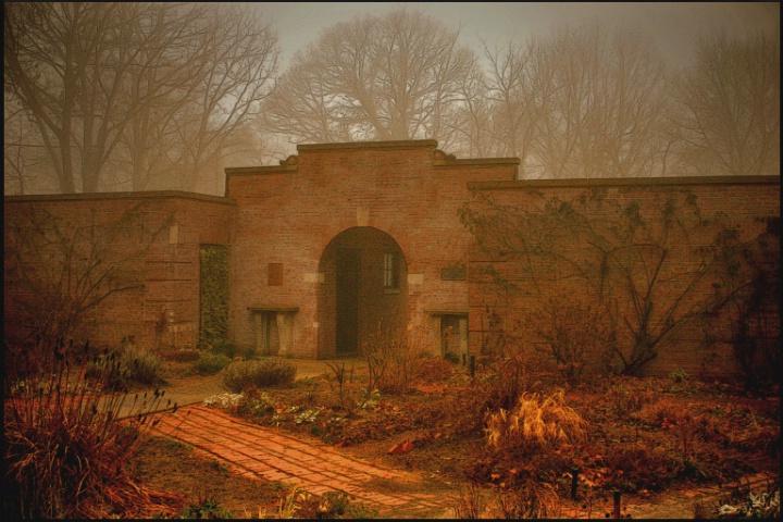 Haunted Garden