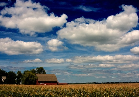Red Barn HDR