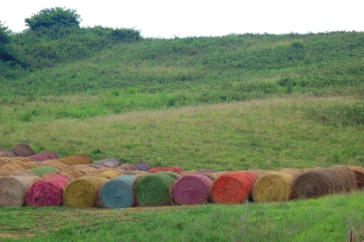 Rainbow Bales