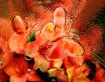 Flowers Through t...