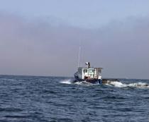 Lone Fishermen