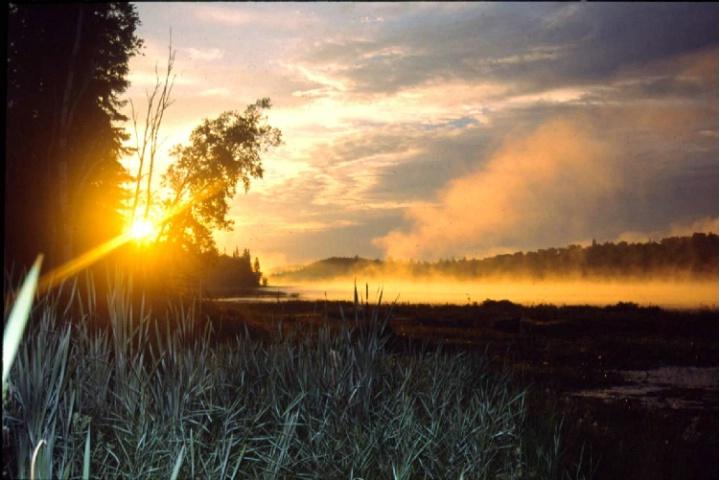 Long Lake Algonquin Park