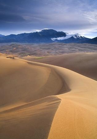 Sun Kissed Dune