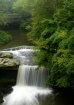 Falls at Mill Cre...
