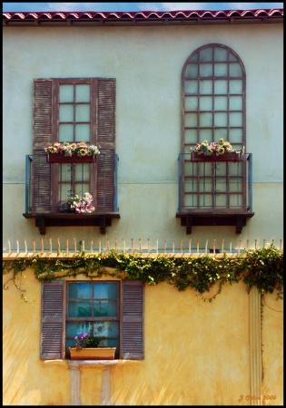 Pacific Avenue Windows