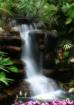 Waterfalls inisid...