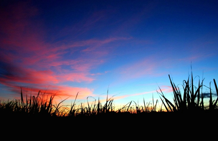 Hot August sunset