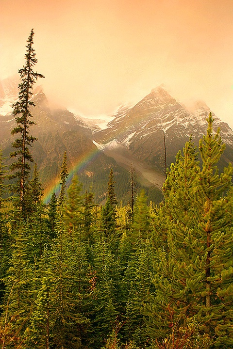 Colors in The Mountains