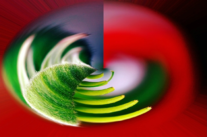 Red and green abstract