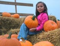 Donna's Pumpkin