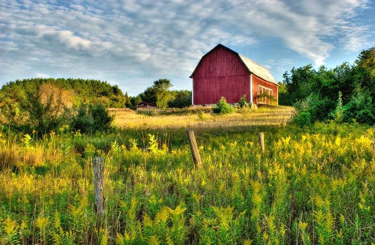 Michigan Farm In Late Evening Light