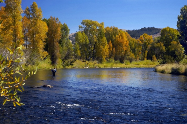 Flyfishing the Colorado River