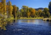 Flyfishing the Co...
