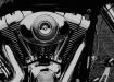 Harley Davidson F...