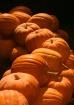 The Pumpkin Trail...