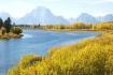 Teton Fall Color