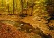 Sulpher Springs C...