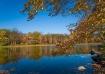 SawMill Lake, Sus...