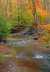 Blue Hen Creek