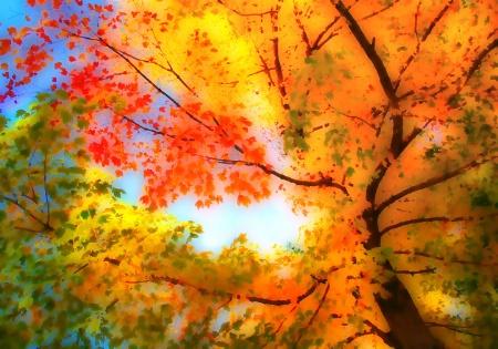 Autumn Sky Palette