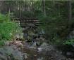 logging railroad ...