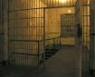 Alcatraz  -  a fo...